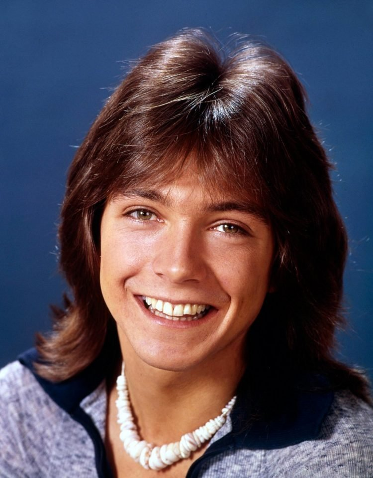 David Cassidy in the 1970s (1)