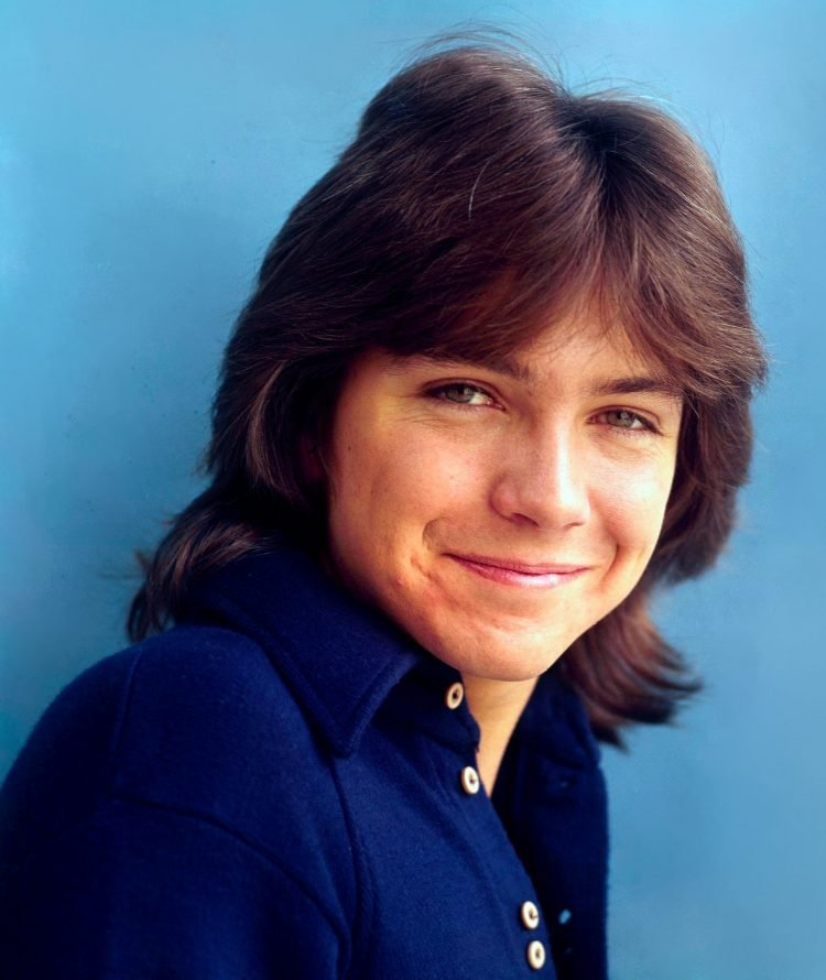 David Cassidy in the 1970s (2)