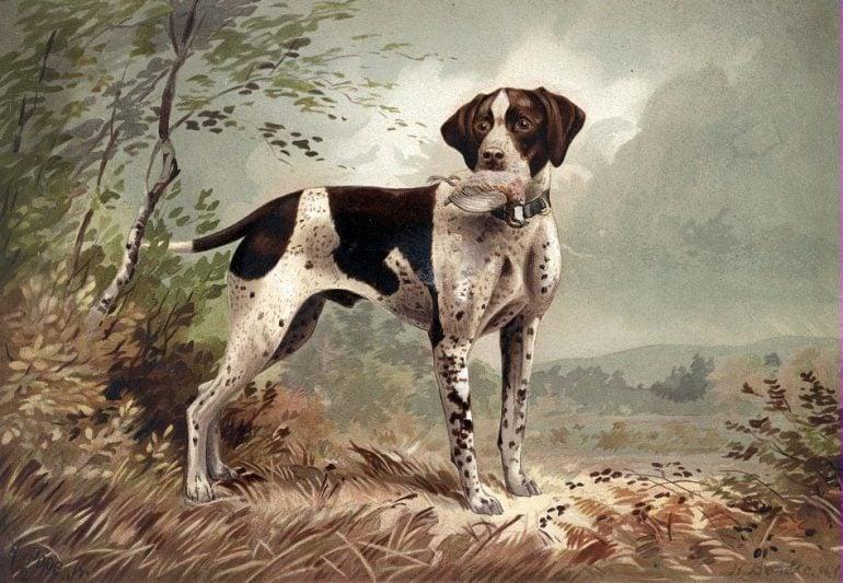 Doglithograph byHermanBencke (c1879)