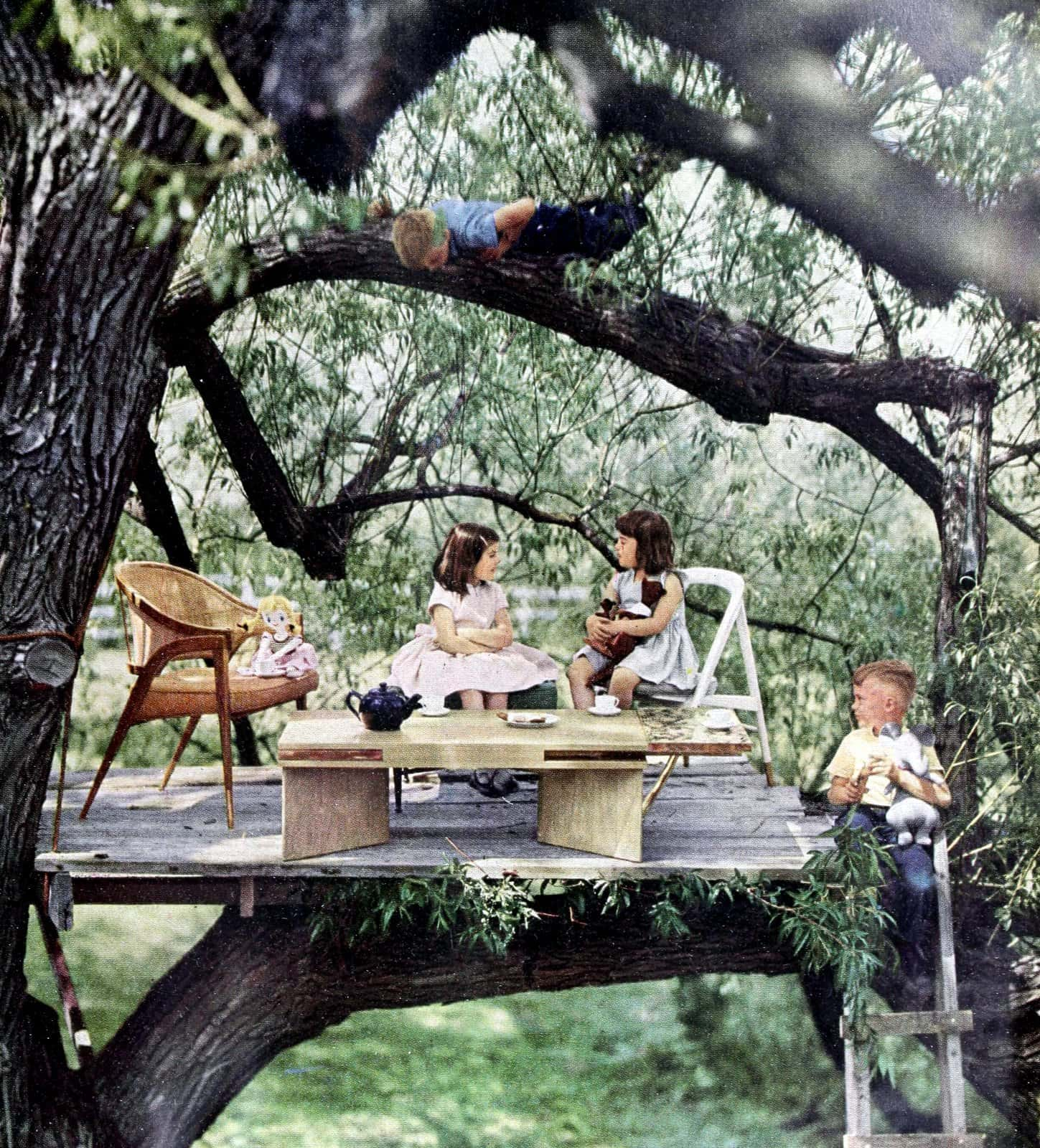 Furniture in a vintage 1950s tree house