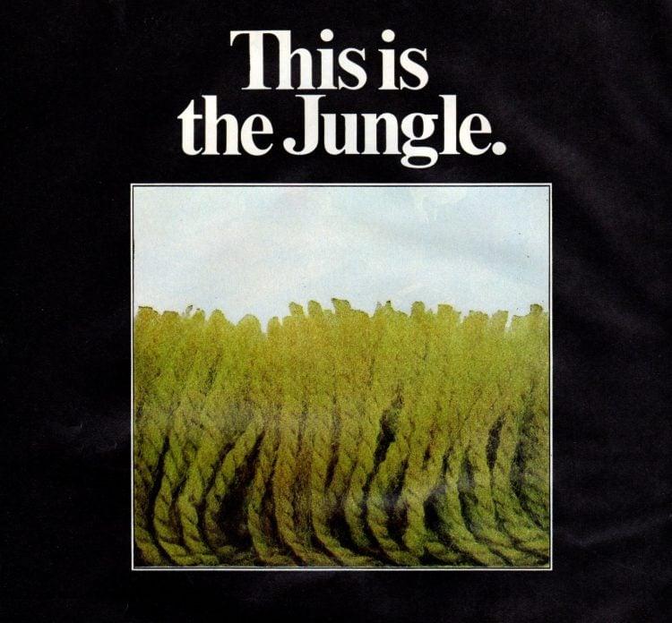 Green jungle shag carpet 1972