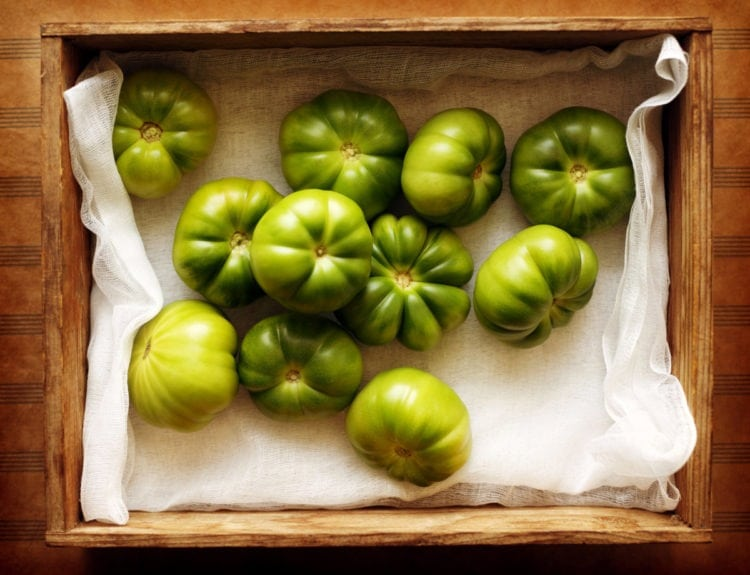 Green tomatoes - vintage recipes