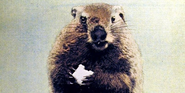 Groundhog Day Old-timer explains Punxsutawney (1960)