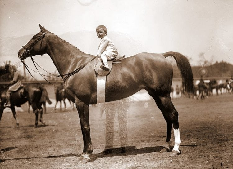 HORSE SHOWS. BABY VINCENT McLEAN ON 'INDIAN FLOWER'