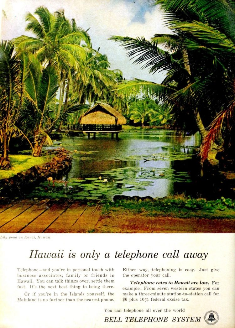 Hawaii in the 60s - Scenic lily pond - tropical