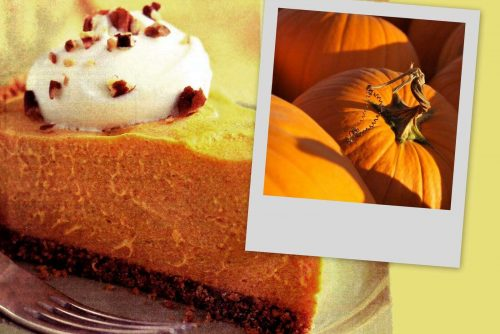 Here's a classic cheesecake-style no-bake pumpkin cream pie to try