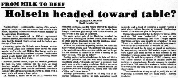 Holstein cows headed toward table - George R R Martin article in Chippewa Herald-Telegram - May 10 1971