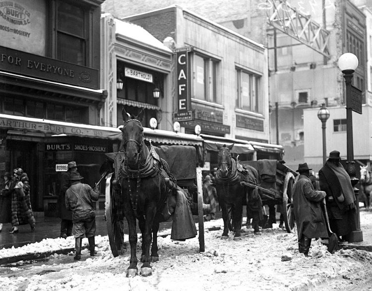 Horses with wagons on snow covered street, Washington DC - 1925