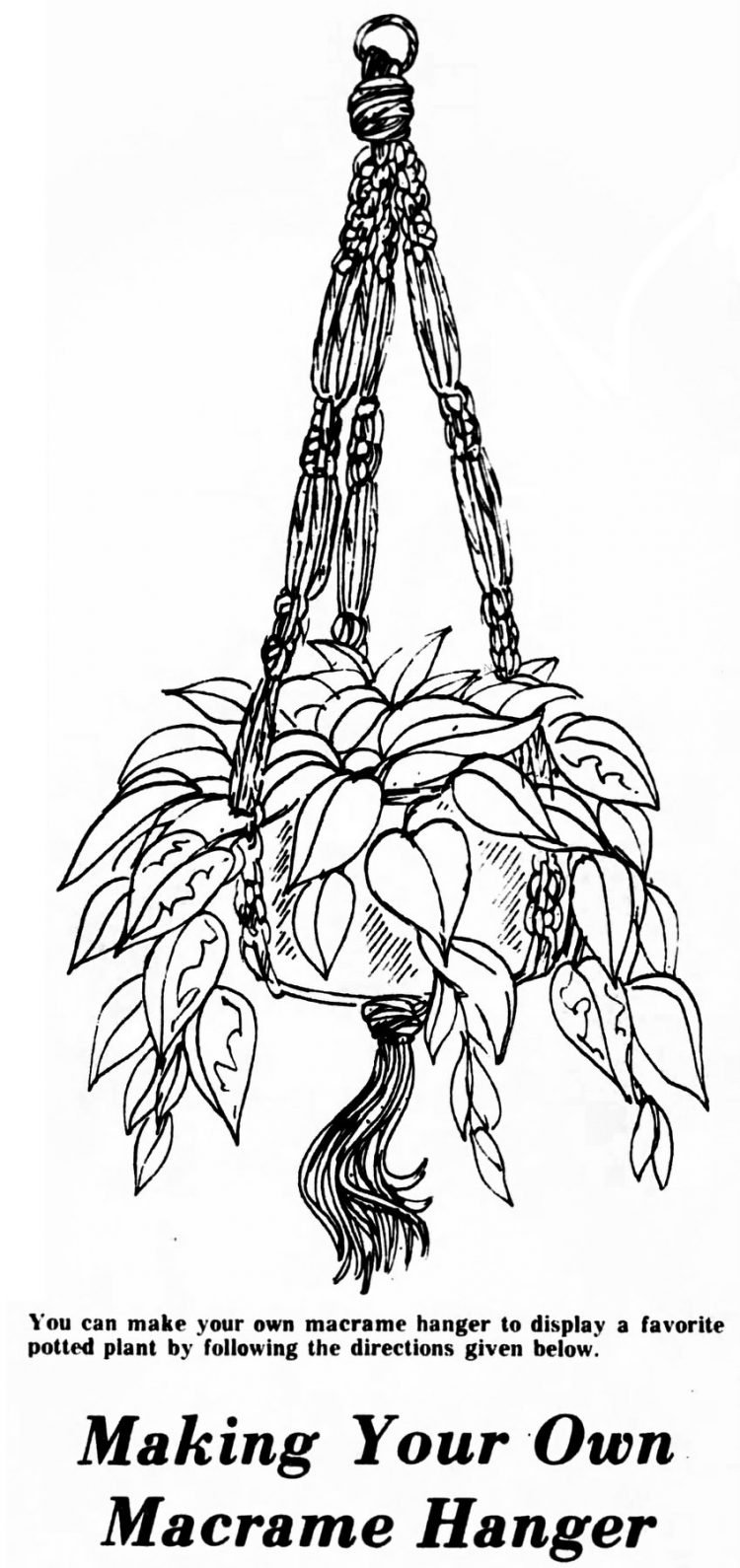 How to make a macrame plant hanger (1975)