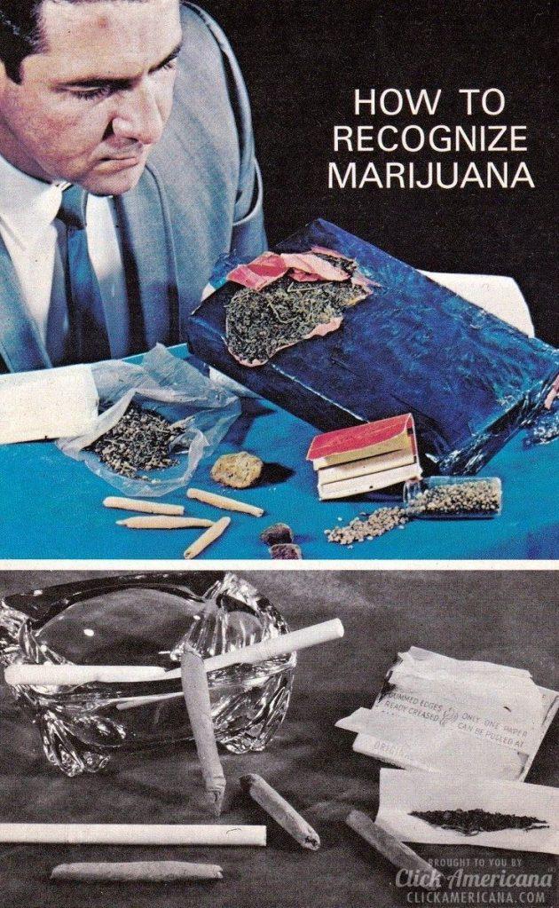 How to recognize marijuana 1970