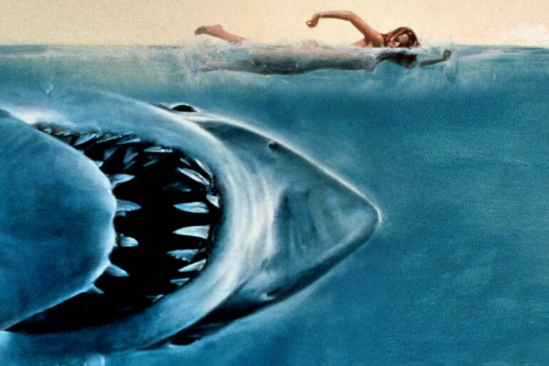 Iconic image from JAWS