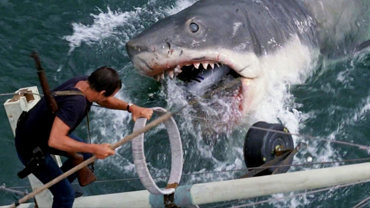 Jaws - the movie - 1975