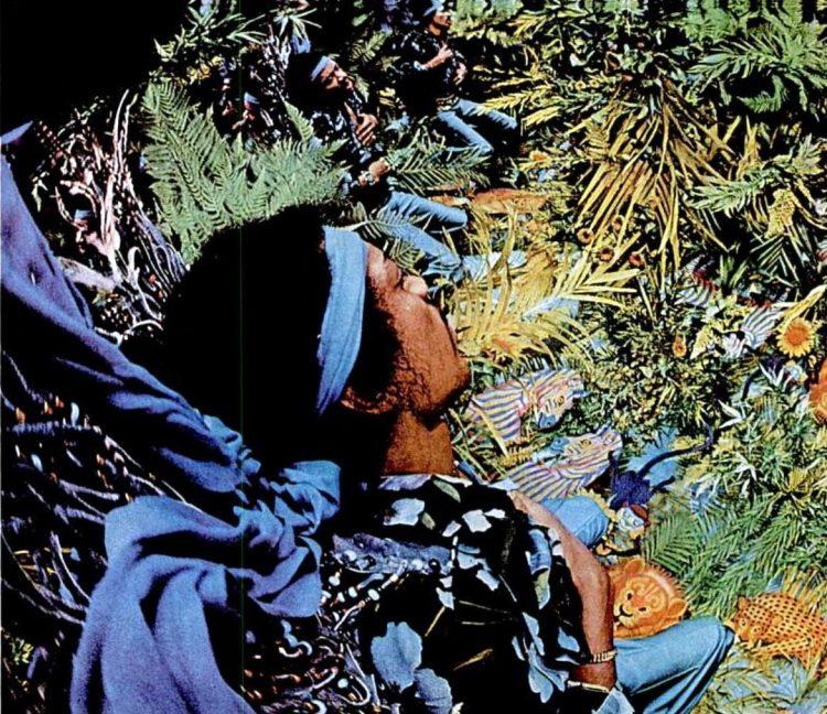 Jimi Hendrix in Life 1969