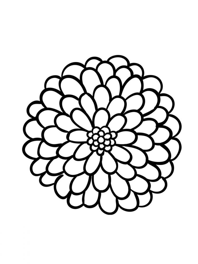 Large Print Adult Coloring Book 2 Big, Beautiful & Simple Flowers (4)