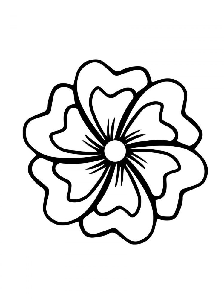 Large Print Adult Coloring Book 2 Big, Beautiful & Simple Flowers (5)