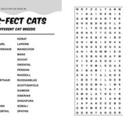 Large print word search examples - 2 pages (1)