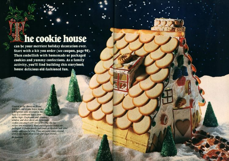 Make a cookie Gingerbread house for Christmas (1)