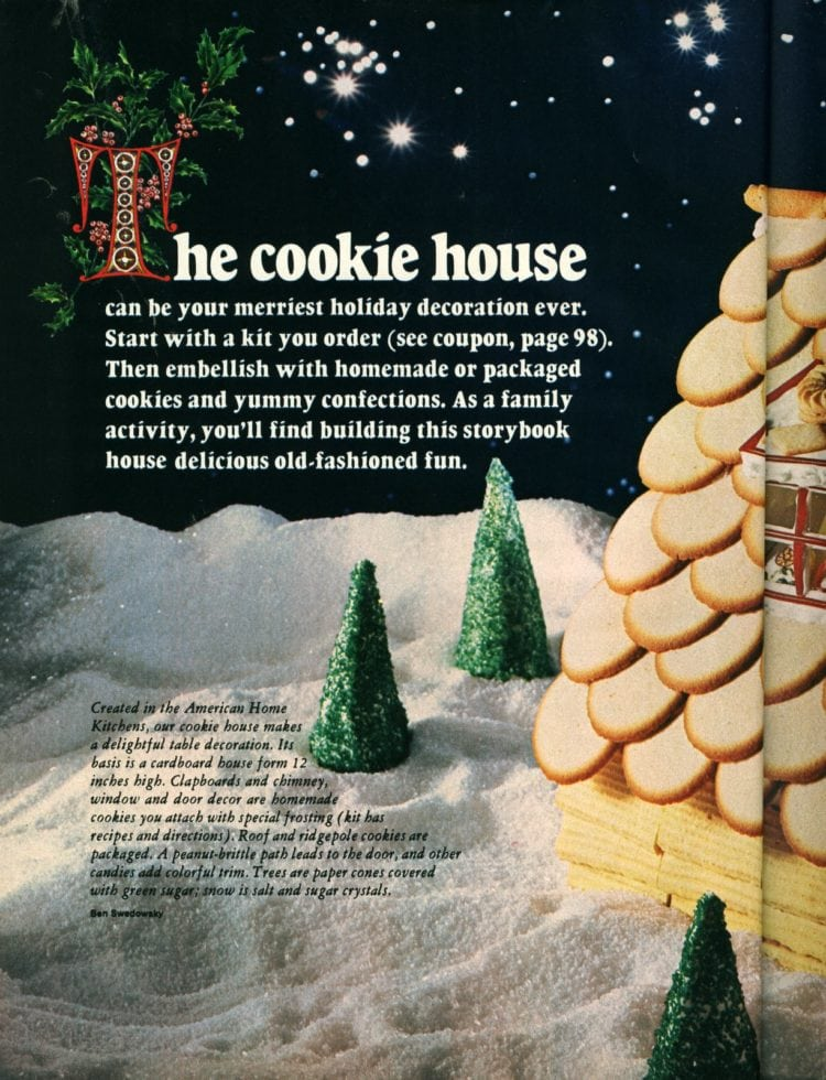 Make a cookie Gingerbread house for Christmas (3)