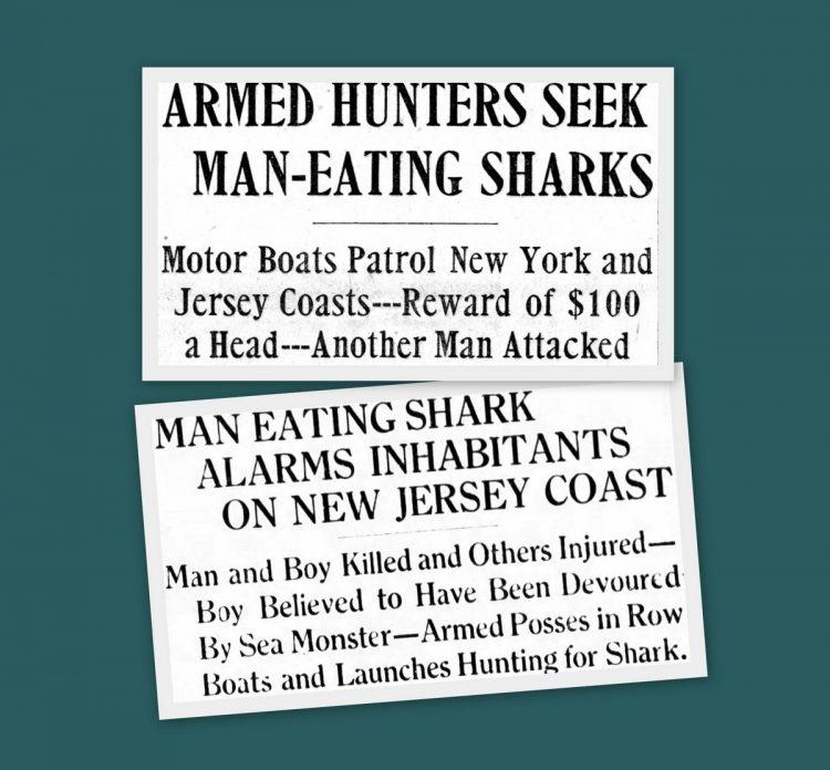Man-eating shark headlines from 1916