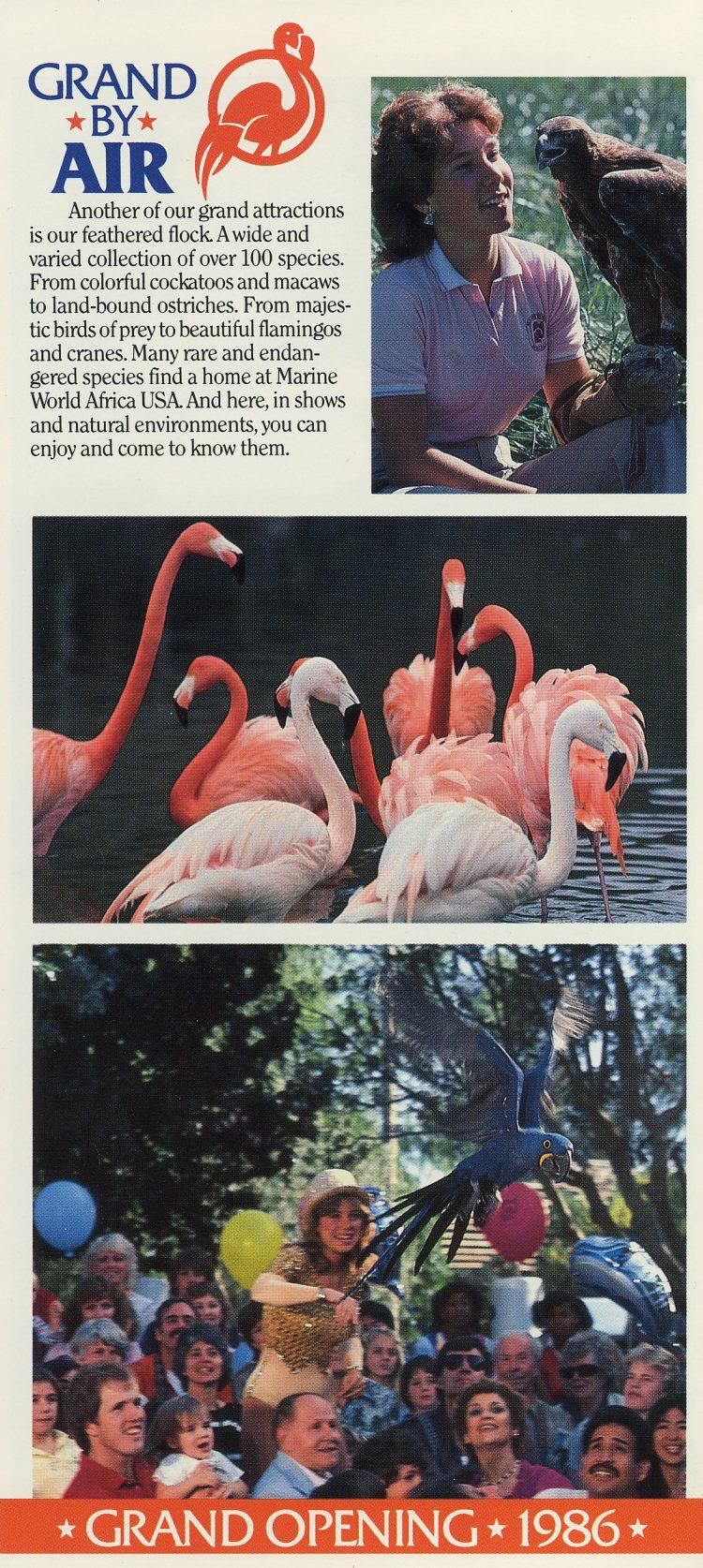 Marine World Africa USA - Grand Opening brochure 1986 (7)