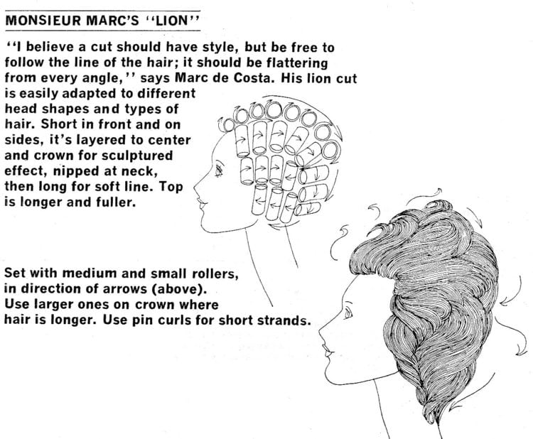 Monsieur Marc's Lion '70s hairstyle