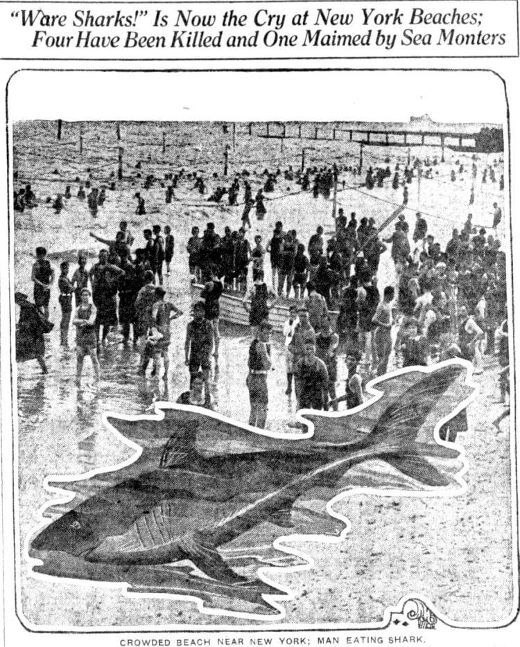 Man-eating shark attacks back in July 1916