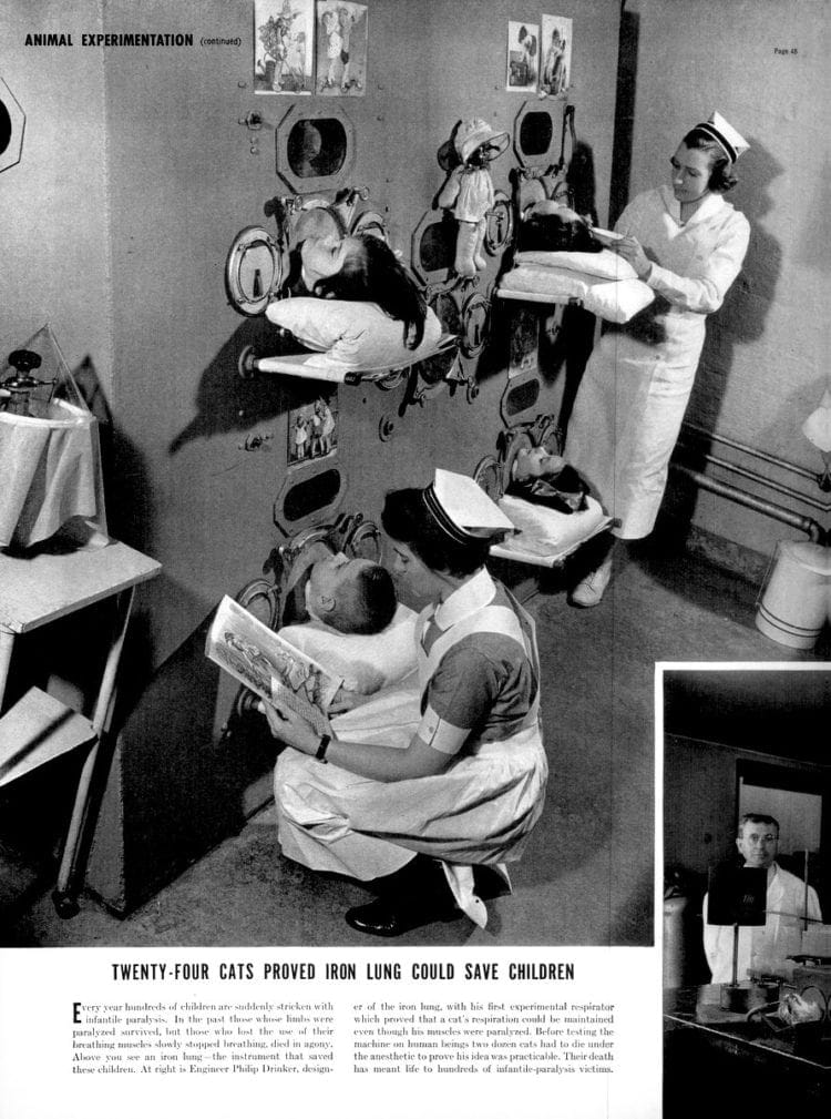 How cats helped create the first iron lung machines for polio victims (1938)