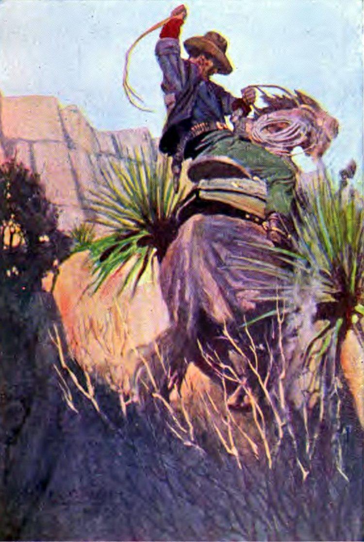 Old Arizona cowboy