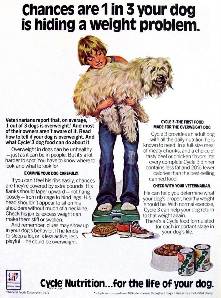 Old Cycle dog food from 1977 - General Foods