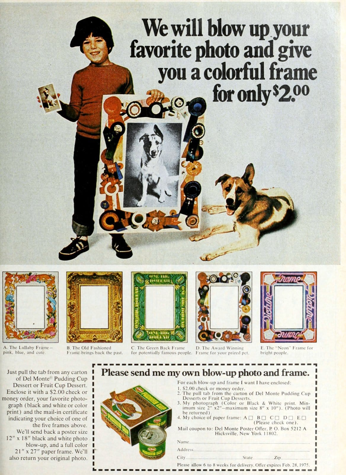 Old Del Monte Pudding cup blow-up photo and frame offer (1973)