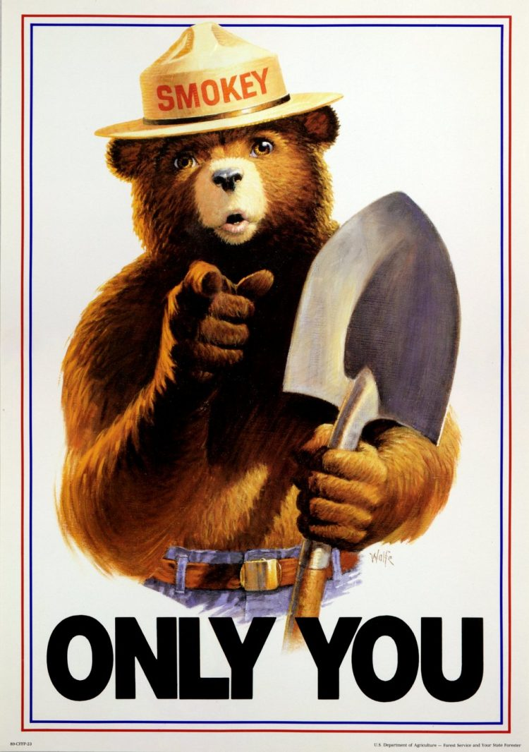 Old Smokey the Bear - ONLY YOU