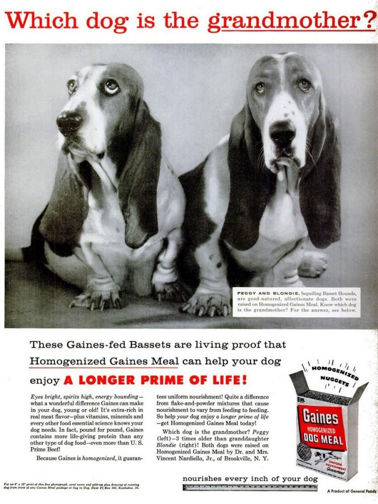 Old-fashioned 1957 Gaines Dog meal food