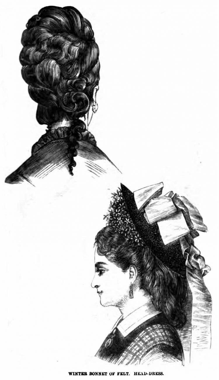 Old-fashioned Victorian hairstyles from 1876 (9)