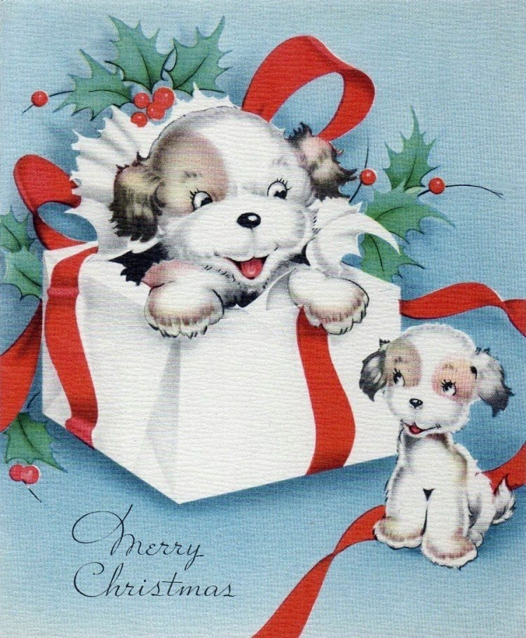 Merry Christmas with cute puppies - Vintage card