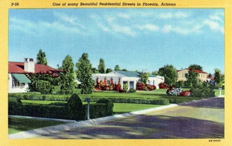 One of many beautiful residential streets in Phoenix Arizona 1940s