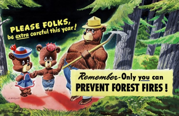 Only you can prevent forest fires - Be extra careful