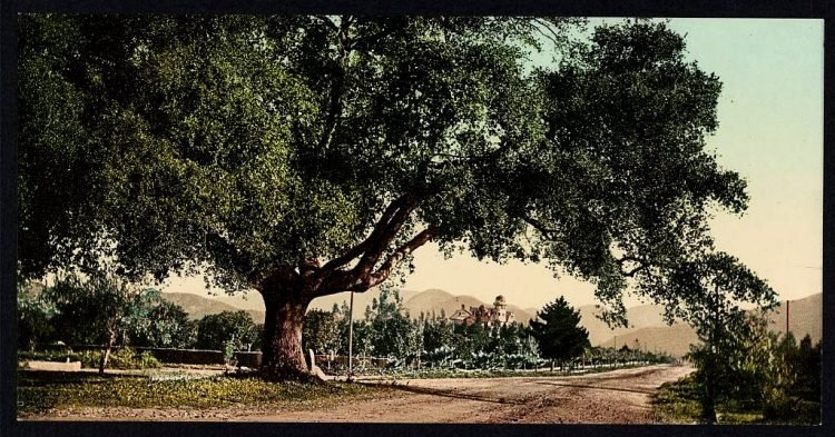 Orange Grove Avenue, Pasadena