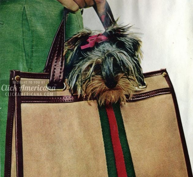 Get your very own Pooch Pouch (1972)