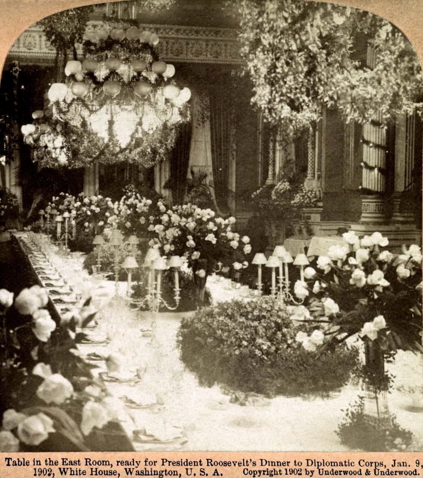 President Roosevelt's dinner to Diplomatic Corps (1902)