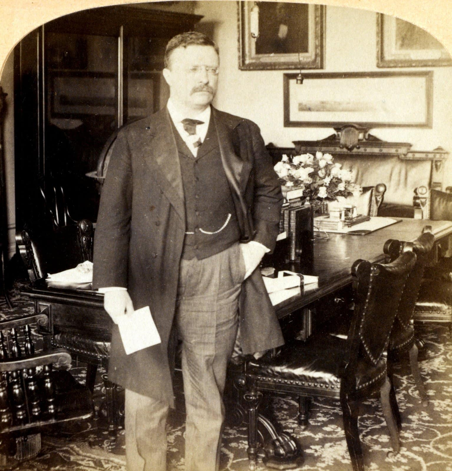 President Theodore Roosevelt in his office-the Cabinet Room, White House (1902)