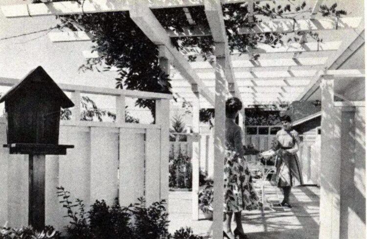 Pretty wooden trellis and fence for a backyard from 1960