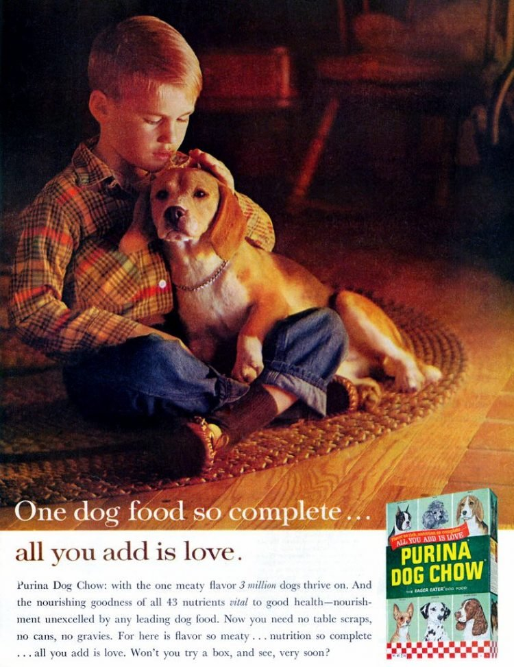 Purina Dog Chow - food from 1960s