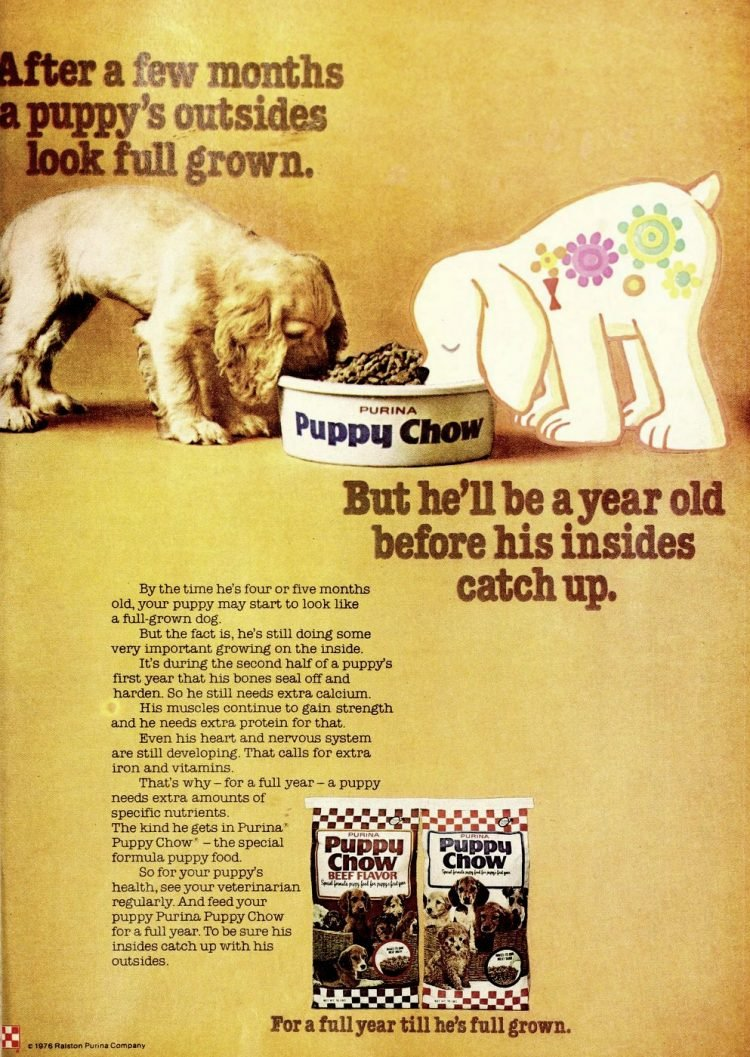 Purina Puppy Chow 1976
