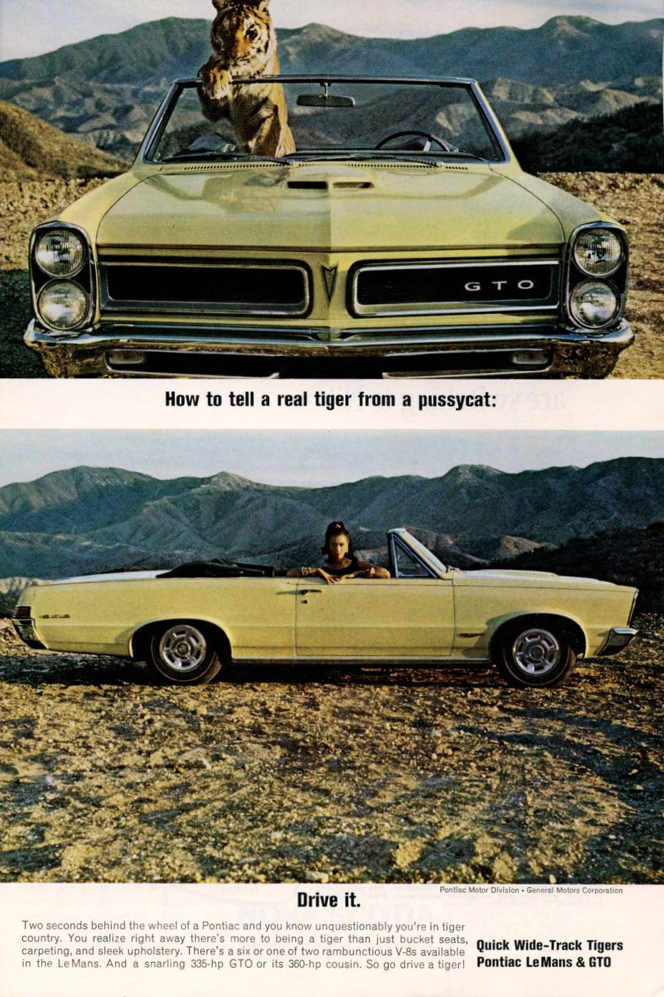 Quick Wide-Track Tigers - 65 Pontiac LeMans and GTO
