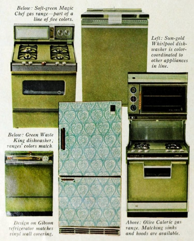Decorator appliances