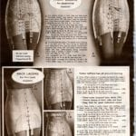 Retro girdles and corselets with garters