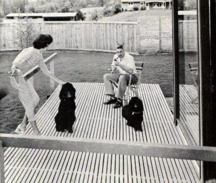 Retro style narrow wood deck in backyard from 1960