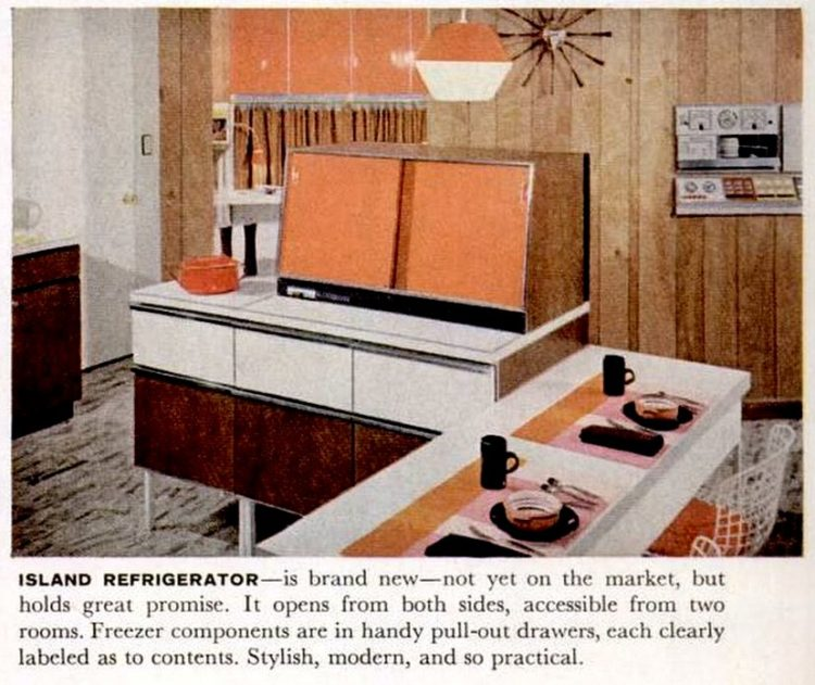 Retro two-sided refrigerator from 1959