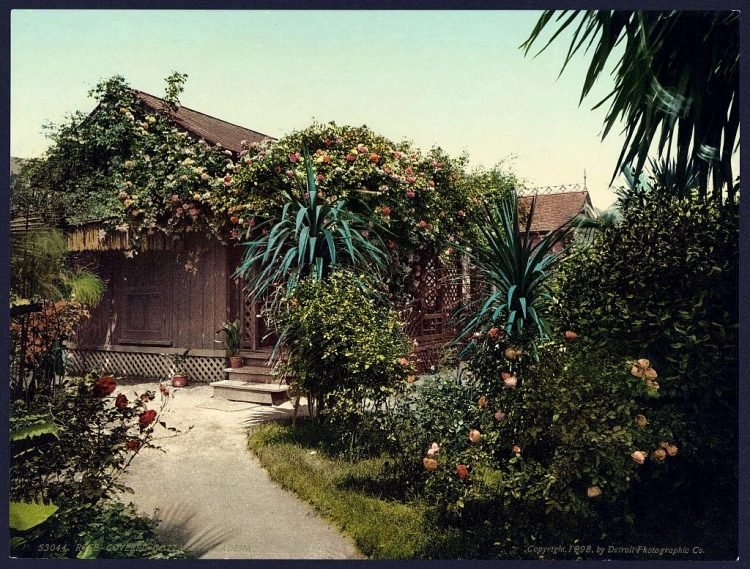 Rose-covered cottage, Pasadena