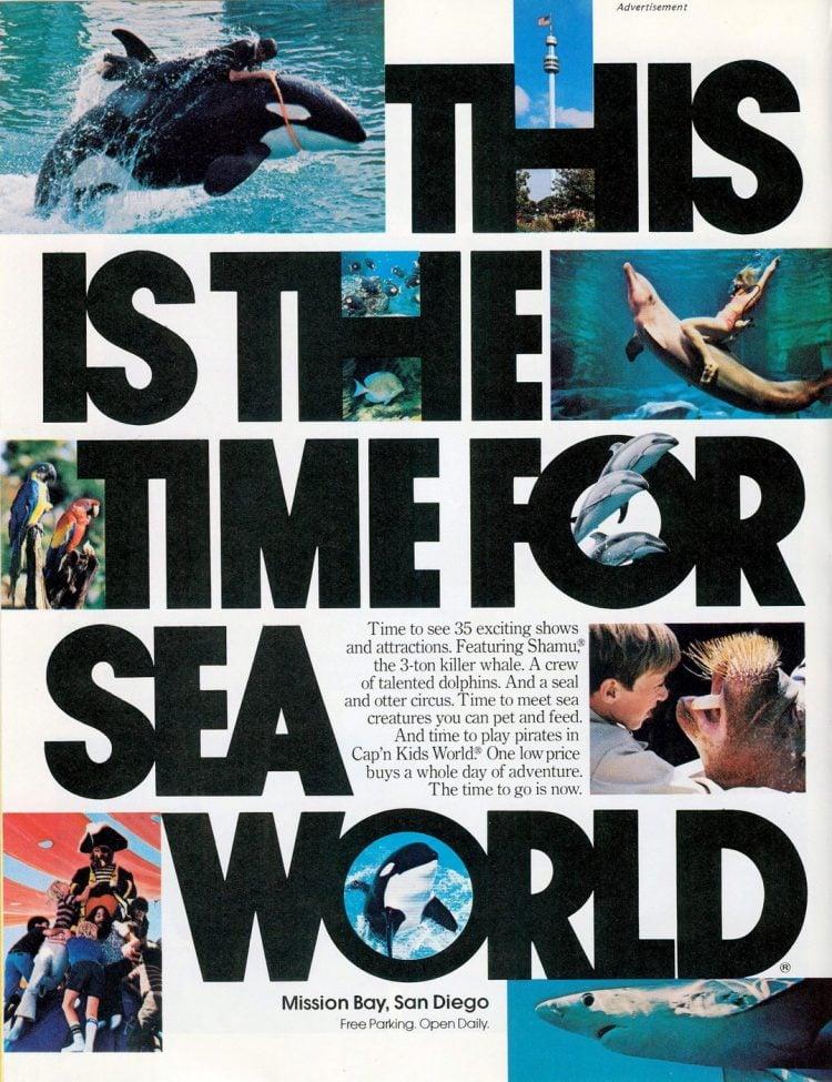 Sea World San Diego 1977